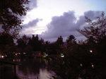 雲よ木々.JPG