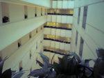 インターコンチネンタルルーム廊下.JPG