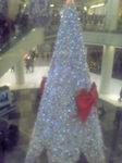 クリスマスTREE.JPG