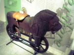 ライオン自転車.JPG