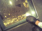 黄金の床.JPG