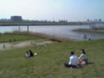 川沿い.JPG