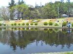 大崎公園池と花.JPG