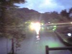 池の光だよ.JPG