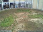 美術館の中庭.JPG
