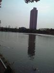 浮間公園とビル.JPG