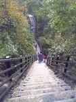 竜神大吊橋の階段.JPG