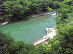 緑の川.JPG