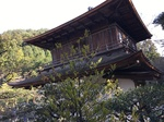 京都 100.JPG
