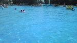 休憩中のプール.jpg