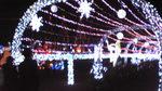 光の祭典2011 ライトサークル.jpg