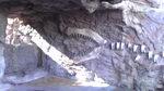 恐竜のシェープ.jpg